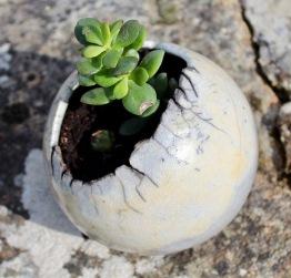 Poterie Toramur Boule raku plantes