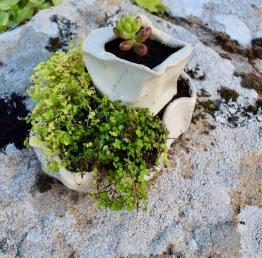 Poterie Toramur pot caillou raku plantes